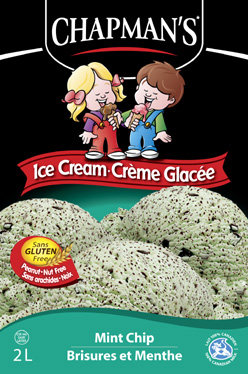 ice cream my favourite cool off flavour is mint chocolate chip