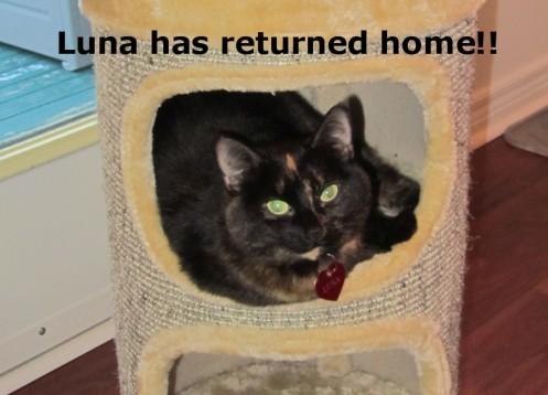 Luna is back! July 4