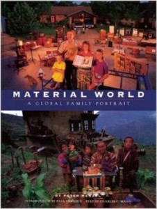 Book_Material World