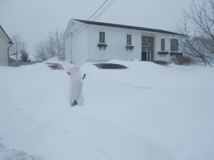 2 cars are under there!