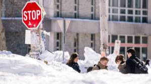 Lovely winter weather. (Photo: Chronicle Herald)