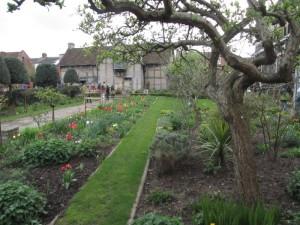 Shakespeare House, back garden