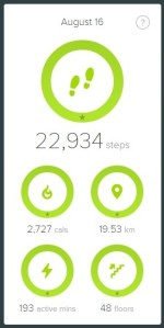 FitbitScreen2