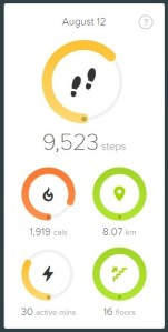 FitbitScreen3