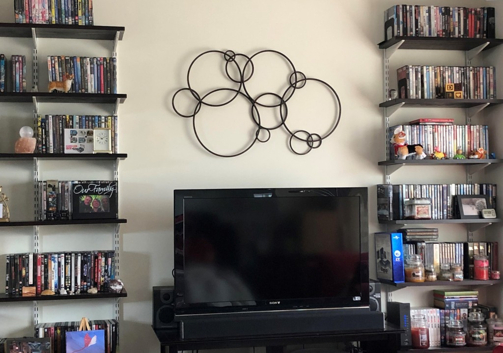 Living room interior with TV and DVD shelves